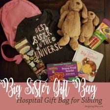 Big Sister Gift Bag